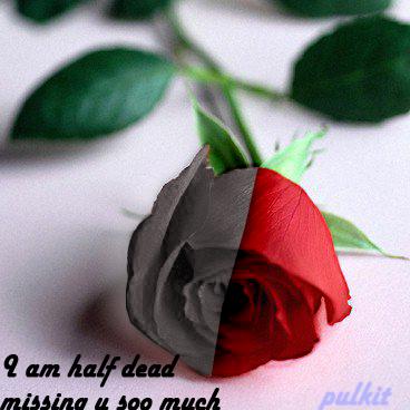 Love One...