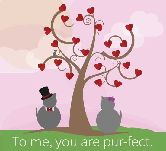 To Me You Are Pur-fect!