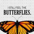 Home : Love : Forever - Forever Butterflies.