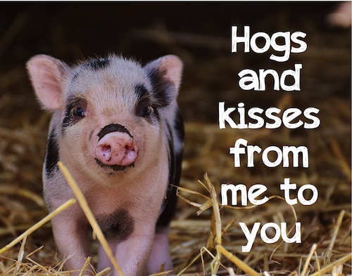 Hogs And Kisses.