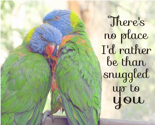 Snuggled Up To You.