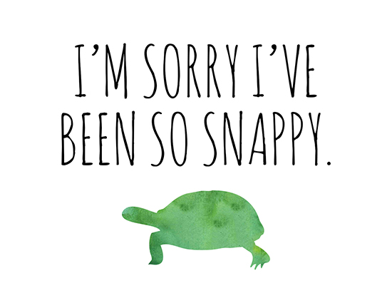 i m sorry for being a snapping free i am sorry ecards