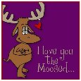 Love You The Moosed!