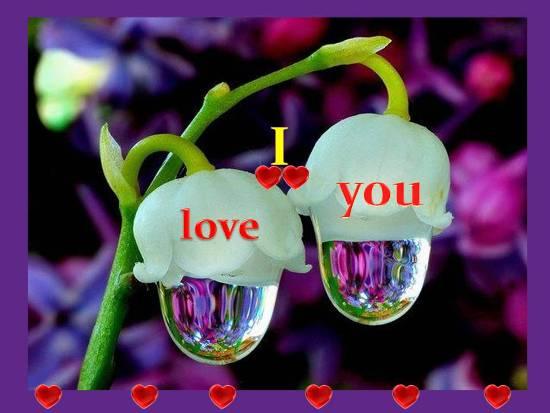 Love You My Love!