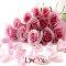 Pink Rose Love.