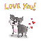 Dog Hearts!