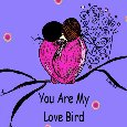 You Are My Love Bird!