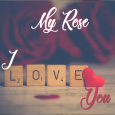 I Love My Rose...