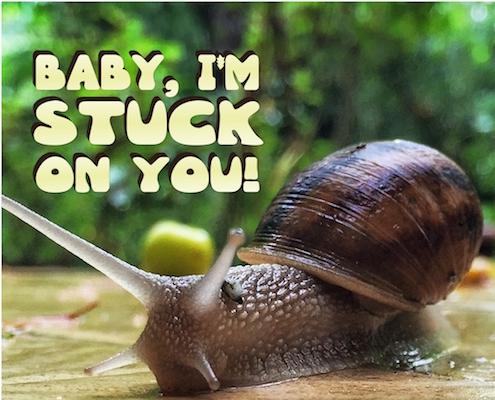 Stuck On You!
