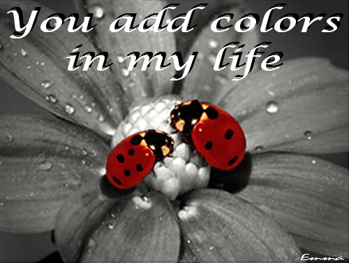 You Add Colors In My Life.