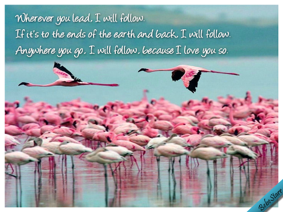 I Will Follow You.
