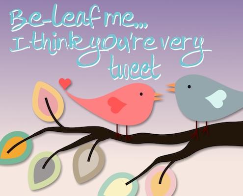 For My Lovebird.