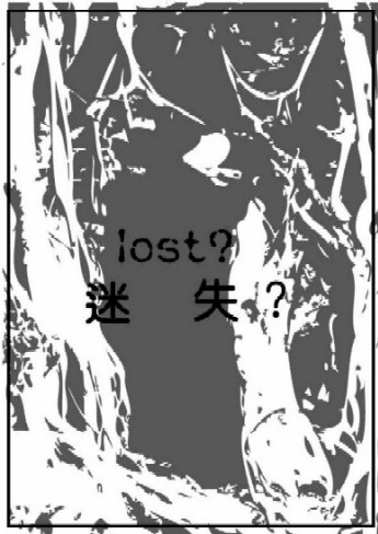Lost?