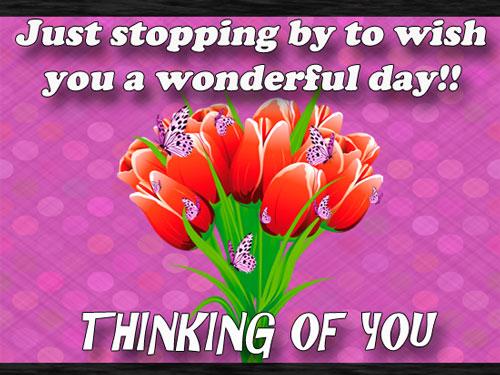 Wish You A Wonderful Day!