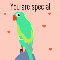 Home : Love : You are Special - You Are Special Parrot Greeting Cards.