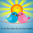 Cute Birds Love!