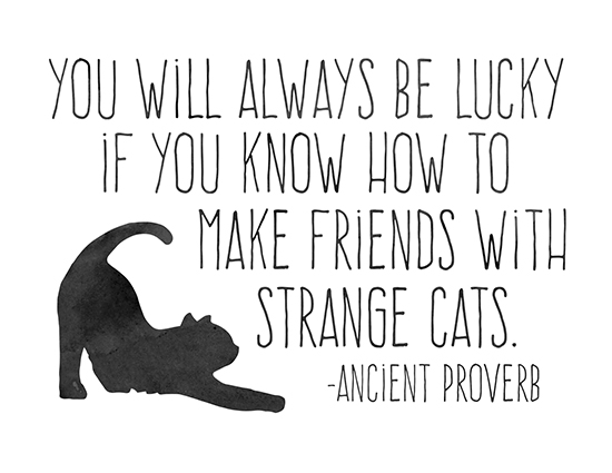 Friends With Strange Cats.