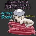 Home : Pets : Get Well - A Nice Get Well Soon Ecard.