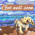 Get Well Soon Doggy.