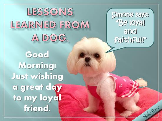 Be Loyal And Faithful!