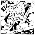 Bird Maze.
