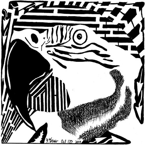 Parrot Maze.