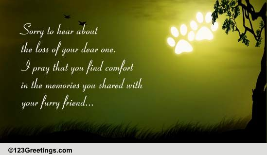 Groovy Memories Of Furry Friend Free Loss Of Pet Ecards Personalised Birthday Cards Epsylily Jamesorg