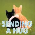 Sending A Hug.