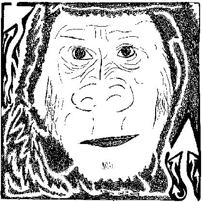 Gorilla Maze.