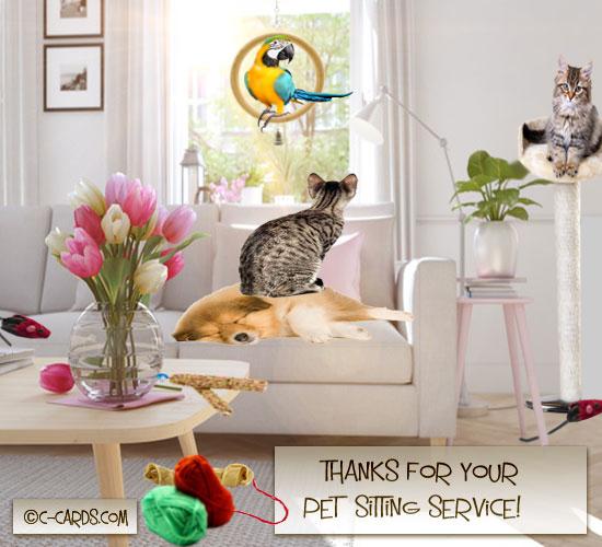 Pet Sitting Thank You.