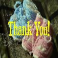 Home : Thank You : Baby Shower Thank You - Boy And Girl Twin Booties
