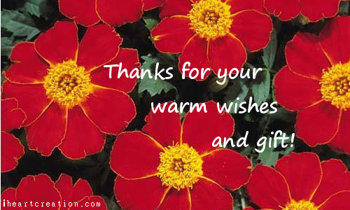 Warm Wishes.
