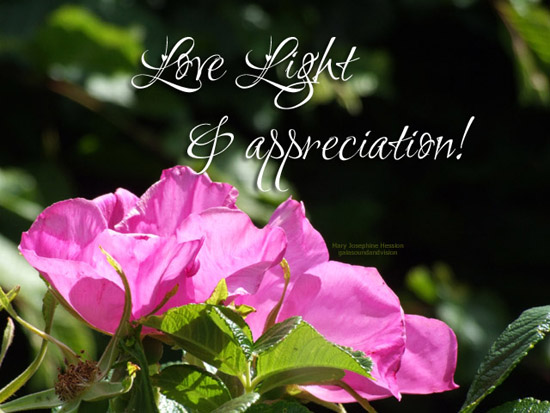 Love Light And Appreciation.