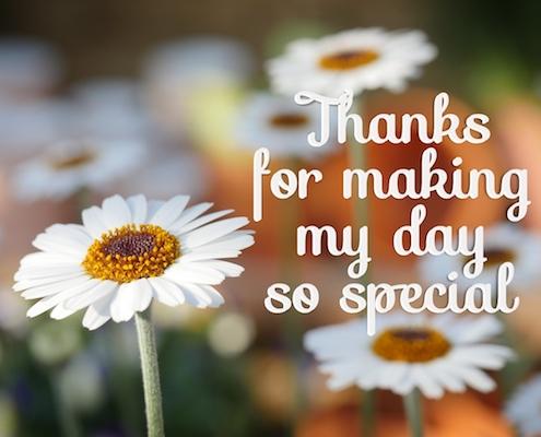A Simple Daisy Thanks.