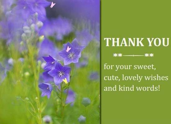 how to thank someone for kind words
