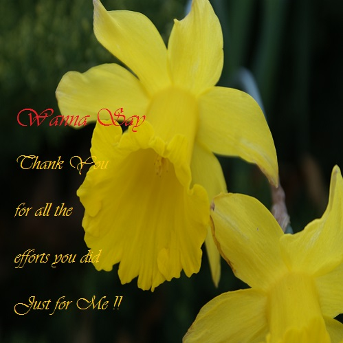 Thanking You From My Heart!