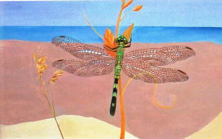 Dragonfly Free Friends Ecards Greeting Cards 123 Greetings