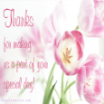Home : Thank You : Invitations - Special Day Thanks...
