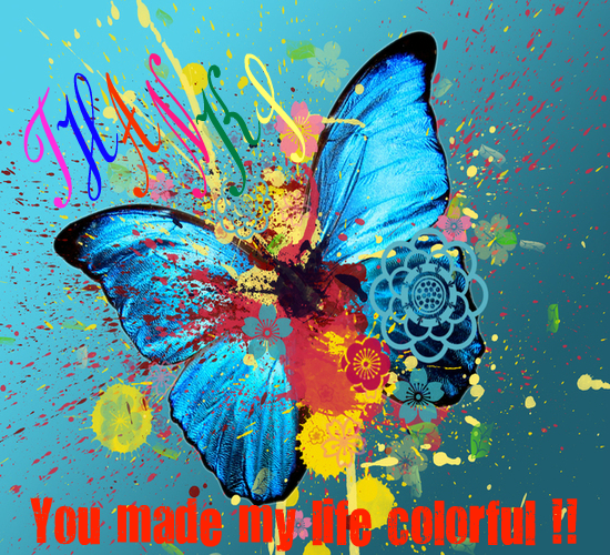 You Made My Life Colorful, Thanks!