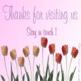 Home : Thank You : Stay in Touch - Thanks For Visiting.