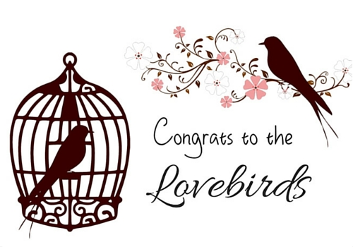 Love Birds Congratulations!