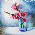 Gladiolus, Floral Congratulation Love!