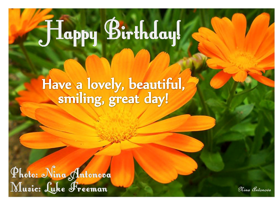 Happy Birthday With Flower Free Flowers Ecards Greeting