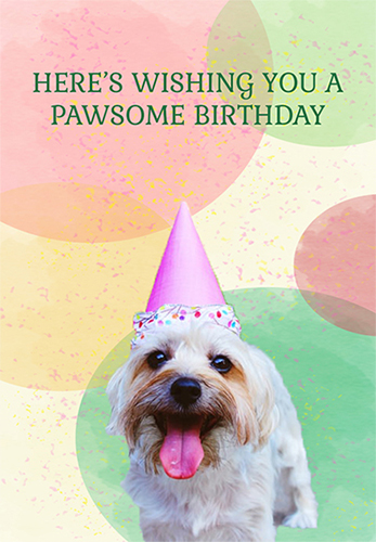 Pawsome Birthday!