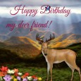 Happy Birthday Deer.