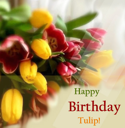 Happy Birthday Tulip!