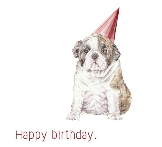 happy birthday bulldog in hat  free pets ecards  greeting