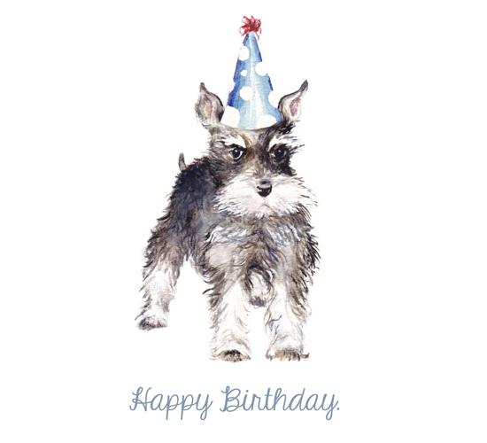 Happy Birthday Schnauzer!