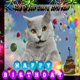 My Cute Pet's Birthday Card.