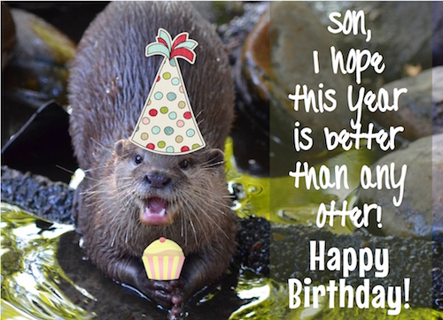 A Birthday Like No Otter For My Son!